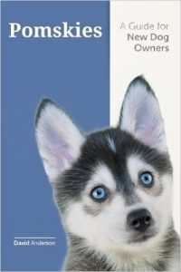 Pomsky book by David Anderson beautiful Husky pomeranian blue eyes cover of book