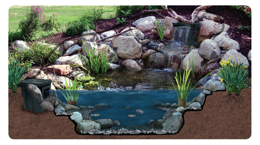 Above Ground Garden Pond Ideas