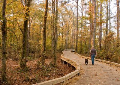 Big Creek Greenway Multi-Use Trail - Forsyth County, GA