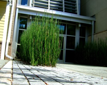 southface-energy-institute-eco-office-04