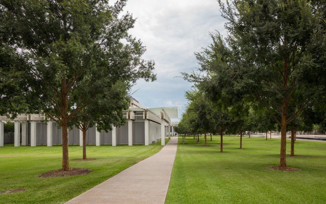 Kimbell Art Museum - Fort Worth, TX