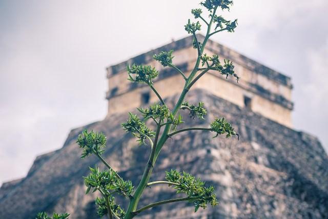 Så, du vill inte besöka Chichen Itzá säger du…?