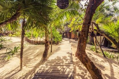 tulum_beach_raw_love_path