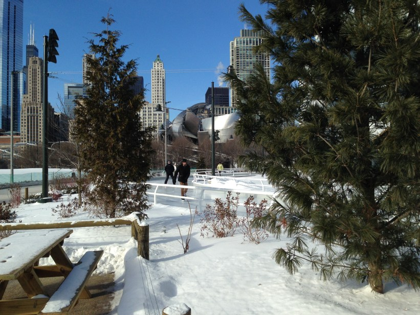 Trip to Chicago: Walking in the new Maggie Daley Park - the skating ribbon