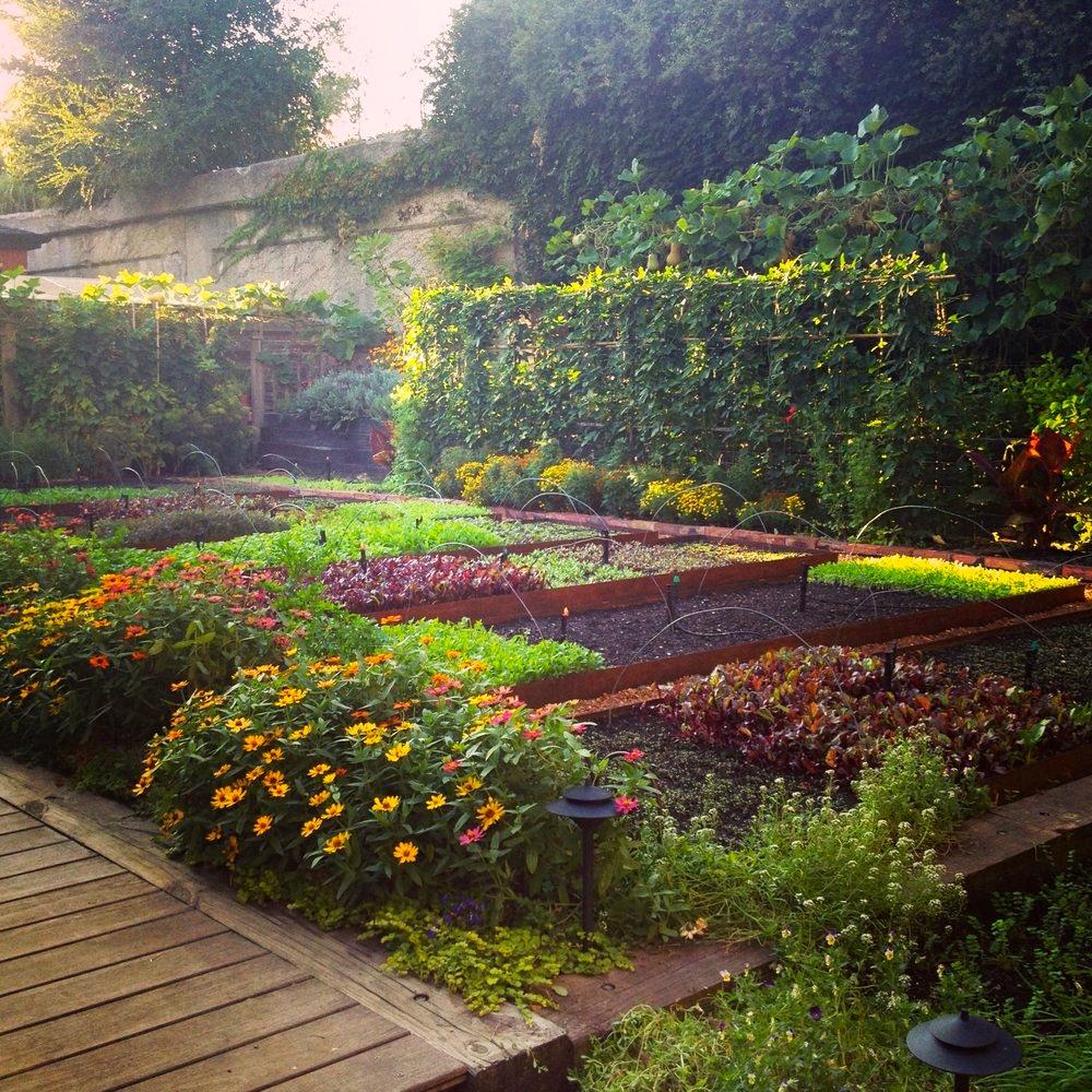 Rick Bayless' beautiful gardens