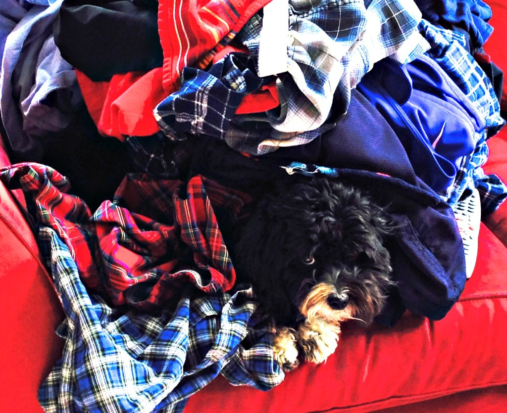 Tia in laundry