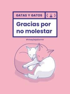 Civismo y ocio responsable promovidos desde Centro | 'Gracias por no molestar' | #Viveydejadormir | Centro | Madrid