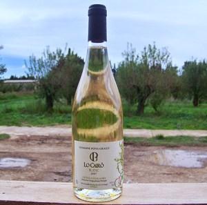 Vin blanc Pons Gralet