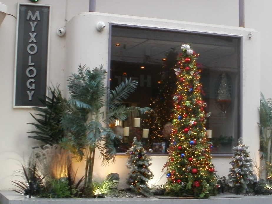 Myxology Christmas Tree and decorations.