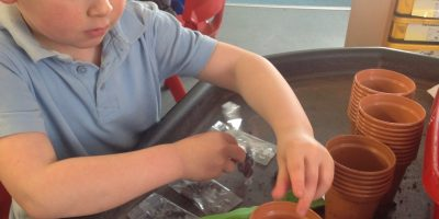 Move over Jack.. Reception are planting Beans!