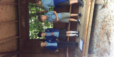 Year 3 Rainforest Music