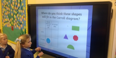 Investigating 2D Shapes