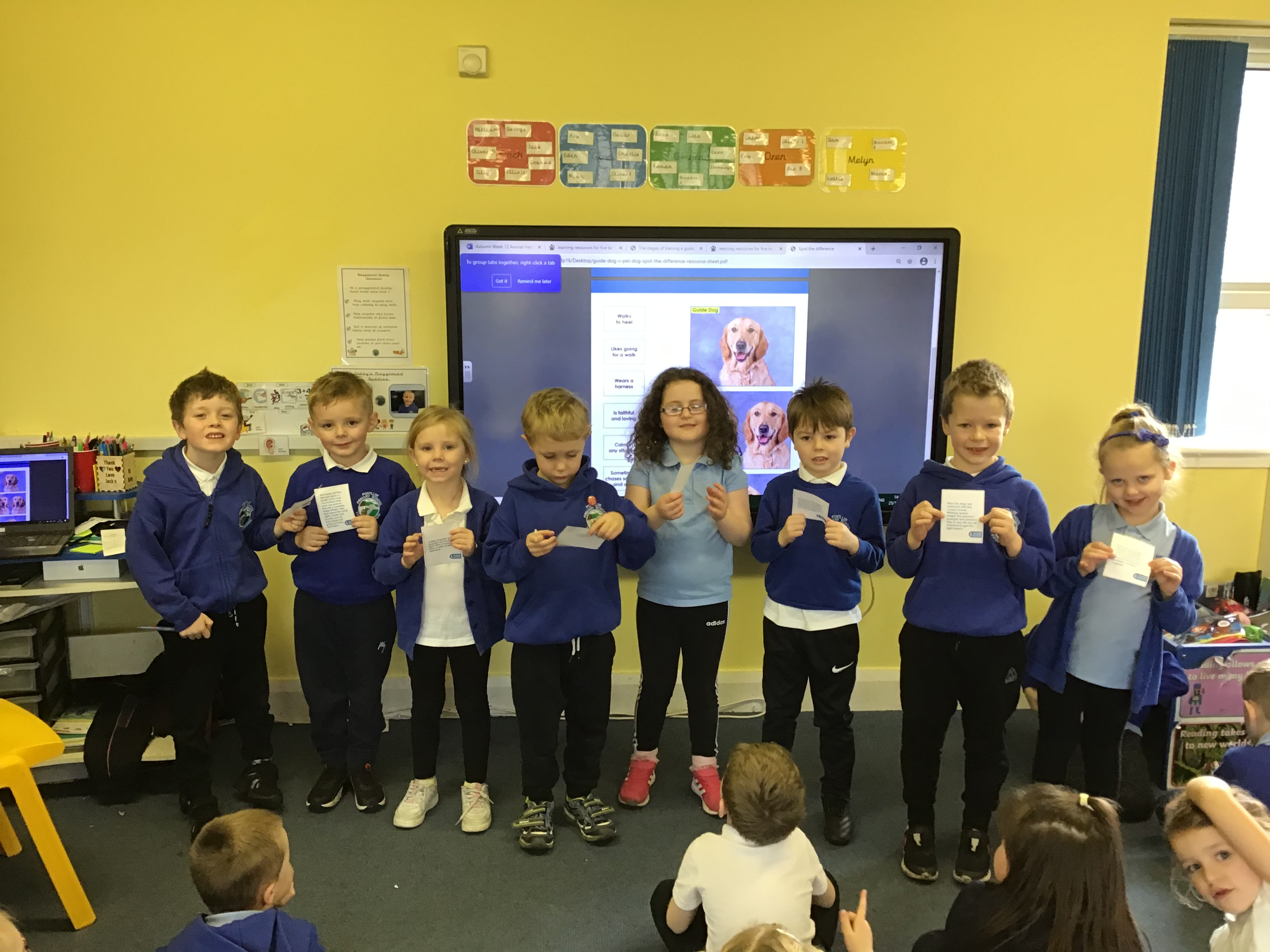 Year 1 Real life superheroes – Guide Dogs