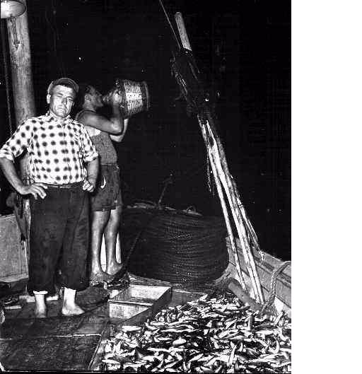 Montecristo isola dei pescatori  Ponza Racconta