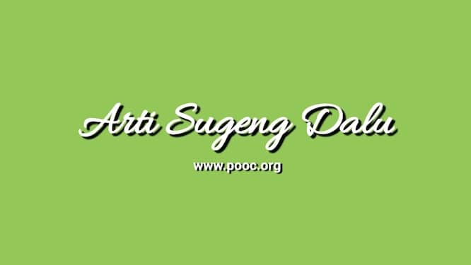 Arti Sugeng Dalu Bahasa Jawa dan Contoh Pengucapannya