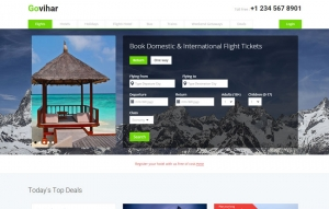 Travel - Flight Booking Sampe Web Design