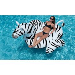 Chair Covers Giant Tiger Love Sac Bean Bag Floats And Loungers Pool Supplies Canada Zebra Ride On Float