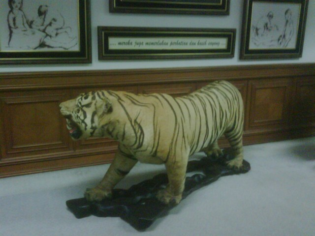 Full View of Taxidermy Tiger