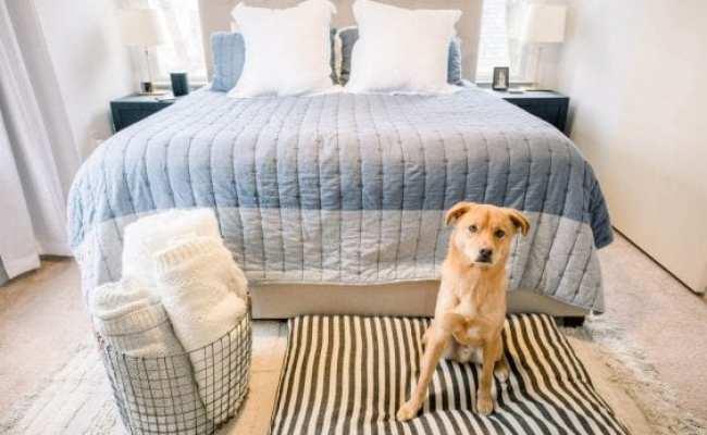 Small Master Bedroom Decor Ideas Home Decor Poor