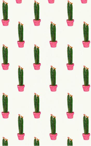 mood-cactus_51