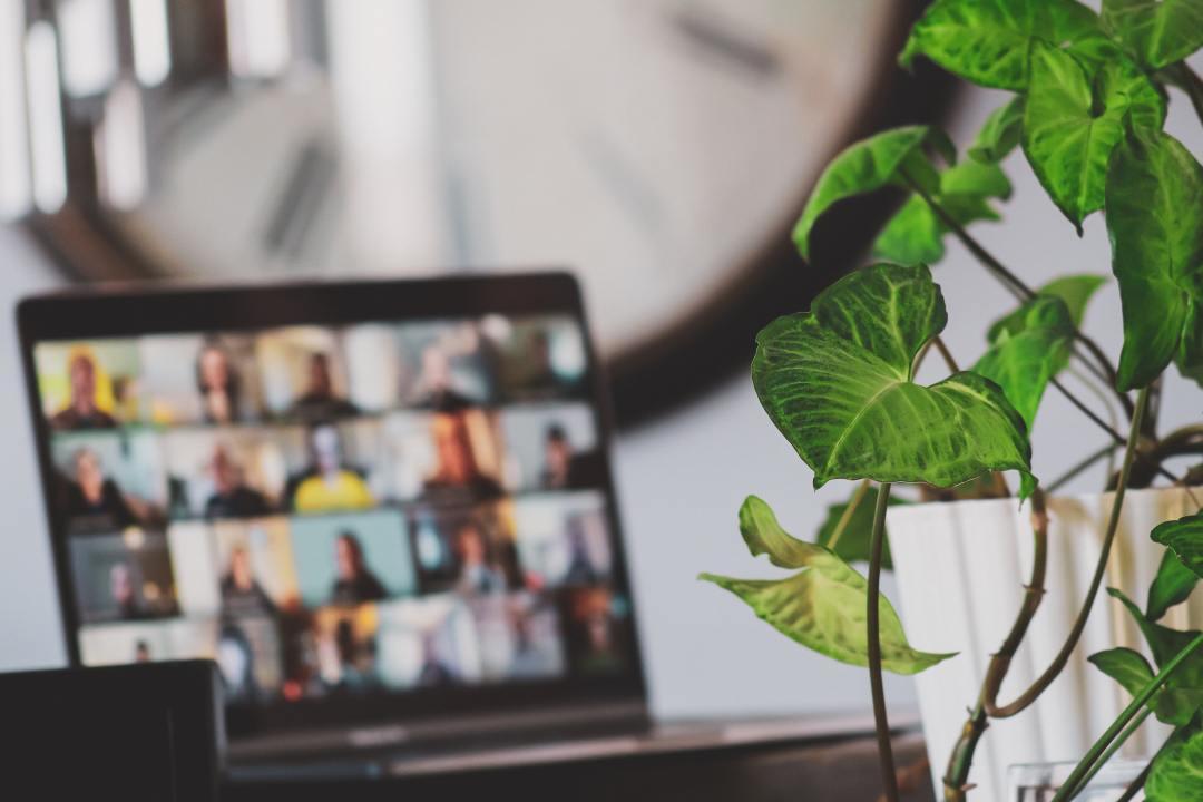 Laptop showing virtual meeting behind plant