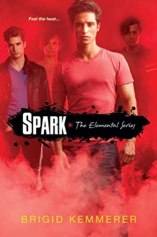 Spark (Book #2 in Elemental Series) by Brigid Kemmerer