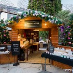 Christmas Wonderland 2016 Gardens by the Bay Sally's Room