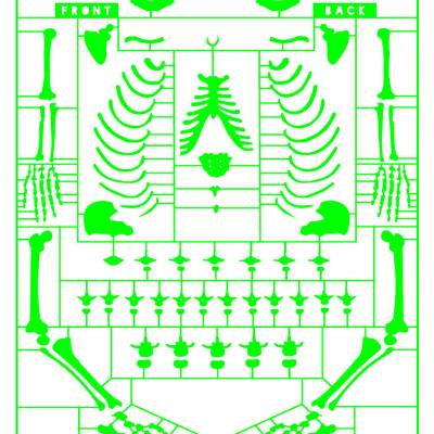 Anatomy of a politician – giclee green