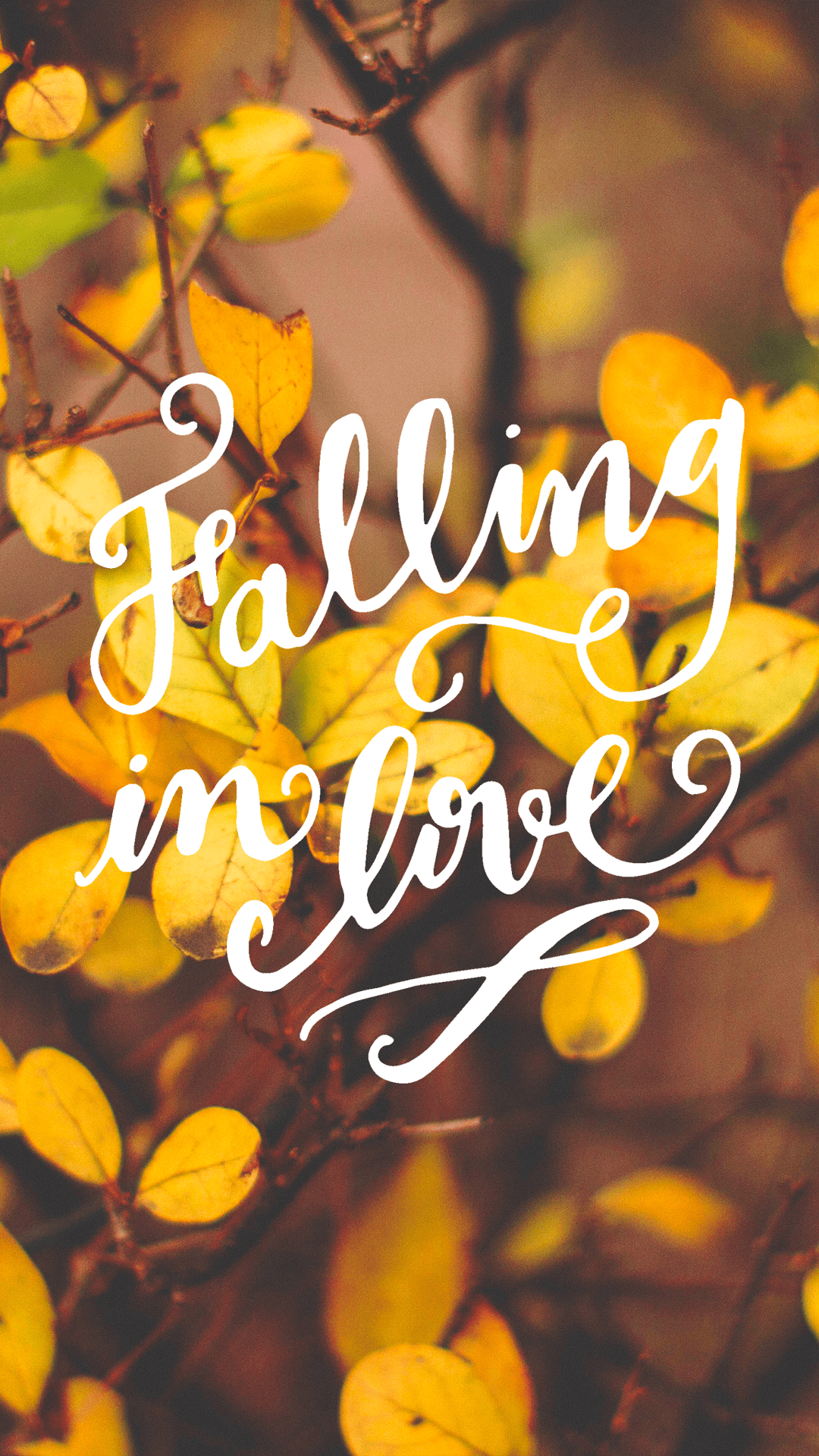 Happy Fall Wallpaper Iphone The Writing S On The Wall Fall In Love With Fall