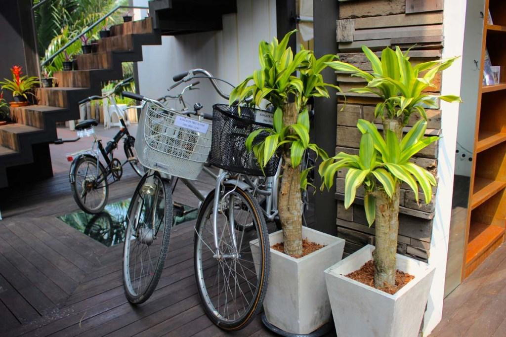 Bangkok Tree House 16