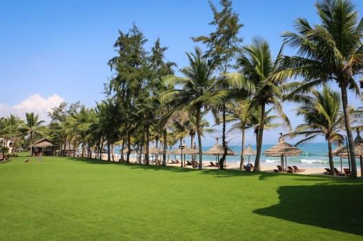Palm Garden-13