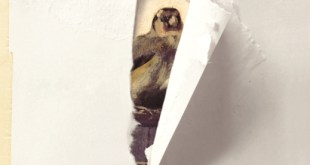 donna-tartt-goldfinch-cover