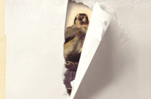 donna-tartt-goldfinch-cover