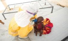 Le foto del servizio sono di Sylvain Cherkaoui. Gli scatti effettuati nei centri Msf di Guinea e Sierra Leone.
