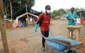 Alcuni operai al lavoro in una zona ai limiti della foresta con le mascherine anti-ebola.