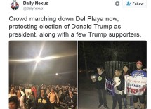 not-my-president-protest