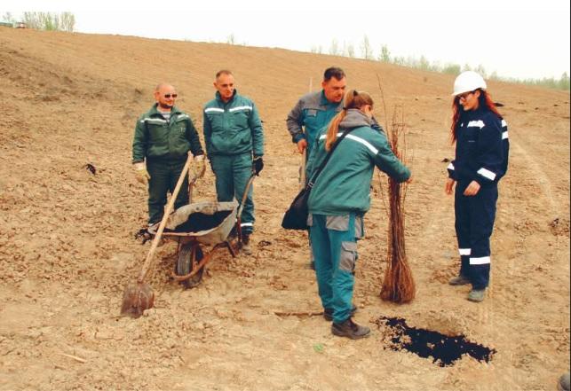 Rekultivacija degradiranog zemljišta - Novi zasadi bagrema