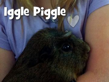 igglepiggle