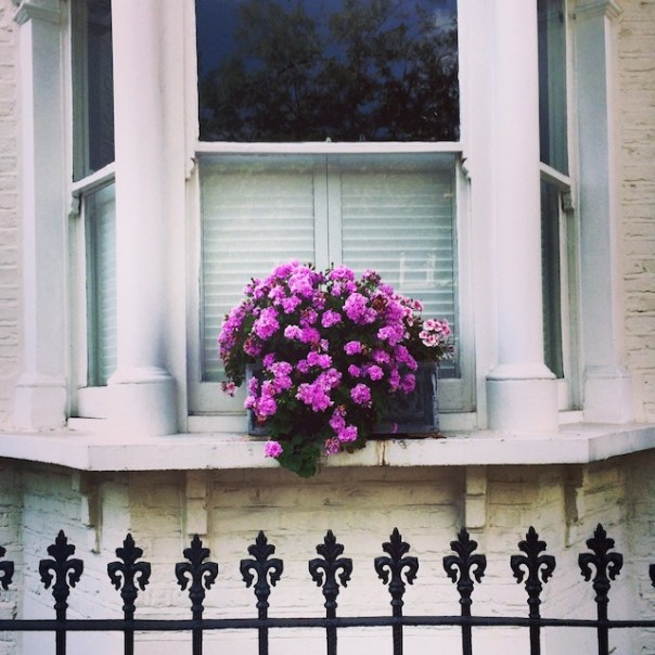 Pretty window in Hammersmith