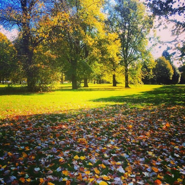 Saturday morning run in Hyde Park
