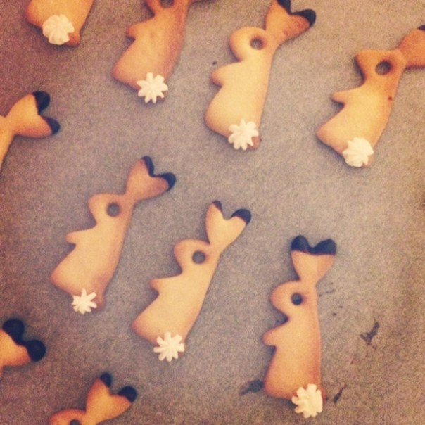 Christmas bunny cookies