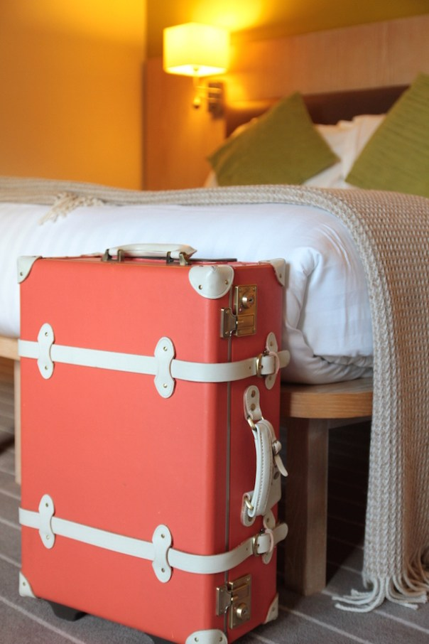 Steamline Luggage suitcase