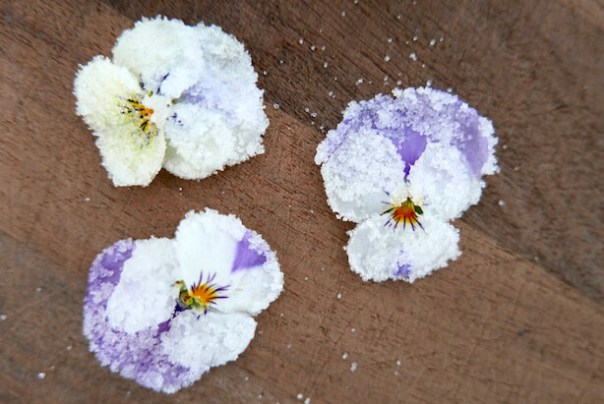crystallise flowers