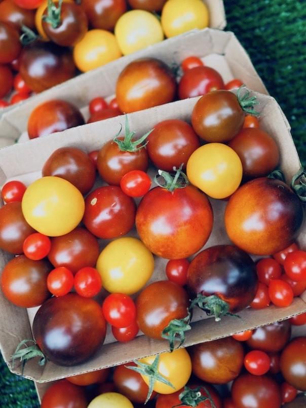 Farmers-Market-Walthamstow-7