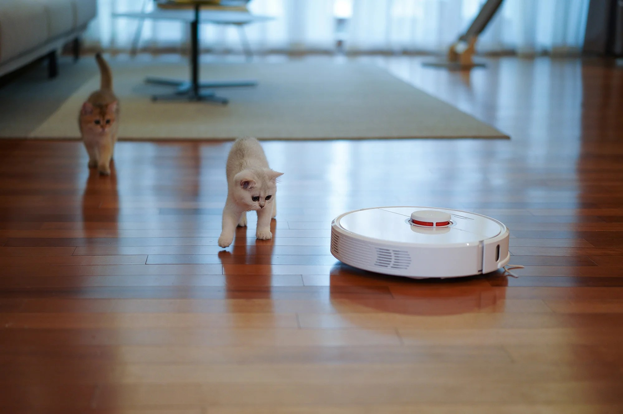 best robot vacuum clean up without