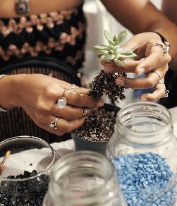 succulent terrarium workshop craft workshops art classes