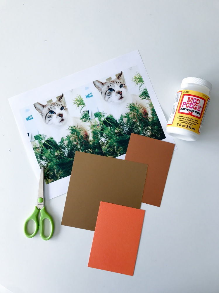 #shop supplies for making fall cards with your cats pop shop america