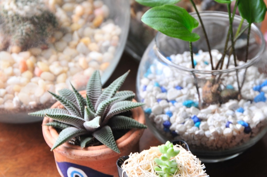 tablescape with terrariums pop shop america diy
