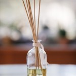 Diy Kit Reed Diffuser With Essential Oils Craft Supplies Pop Shop America