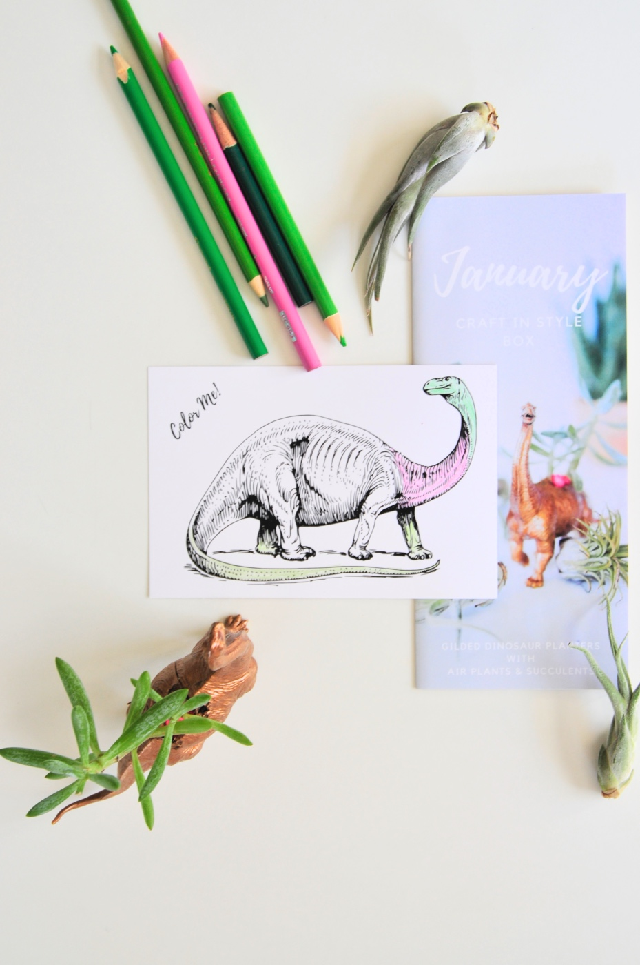 coloring sheet with brontosaurus dinosaur pop shop america